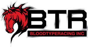 Blood Type Racing Promo Codes